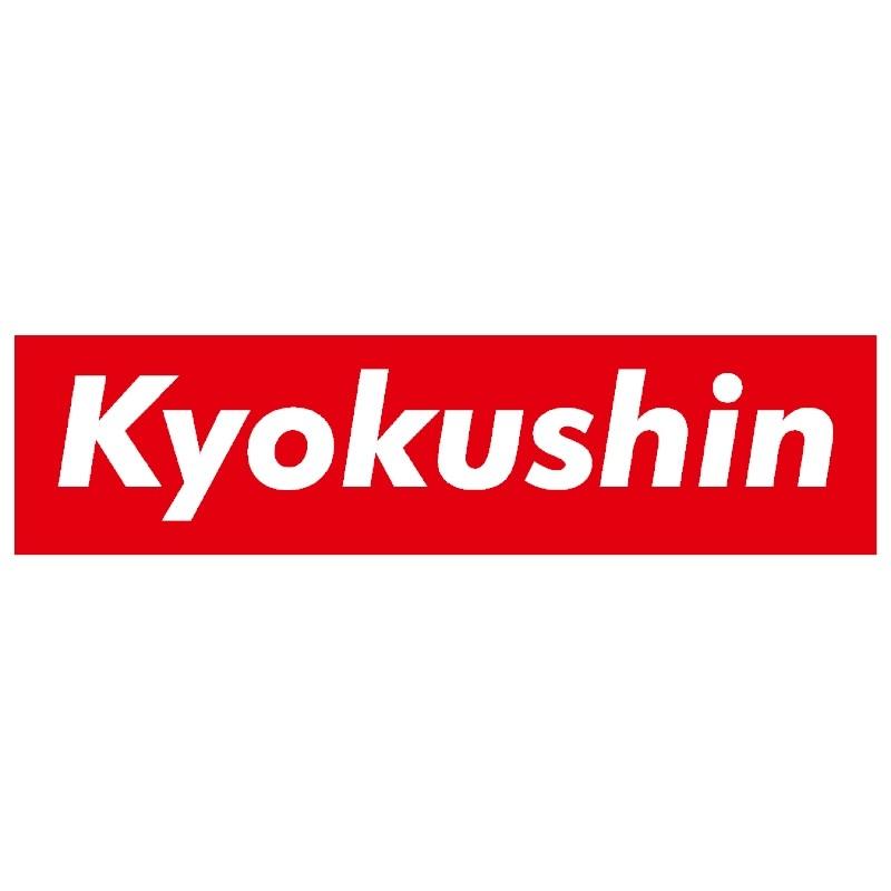 Naklejka kyokushin